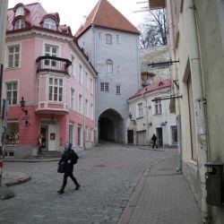 Tallinn - indenfor murene.jpg